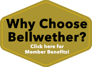 Why Choose Bellwether