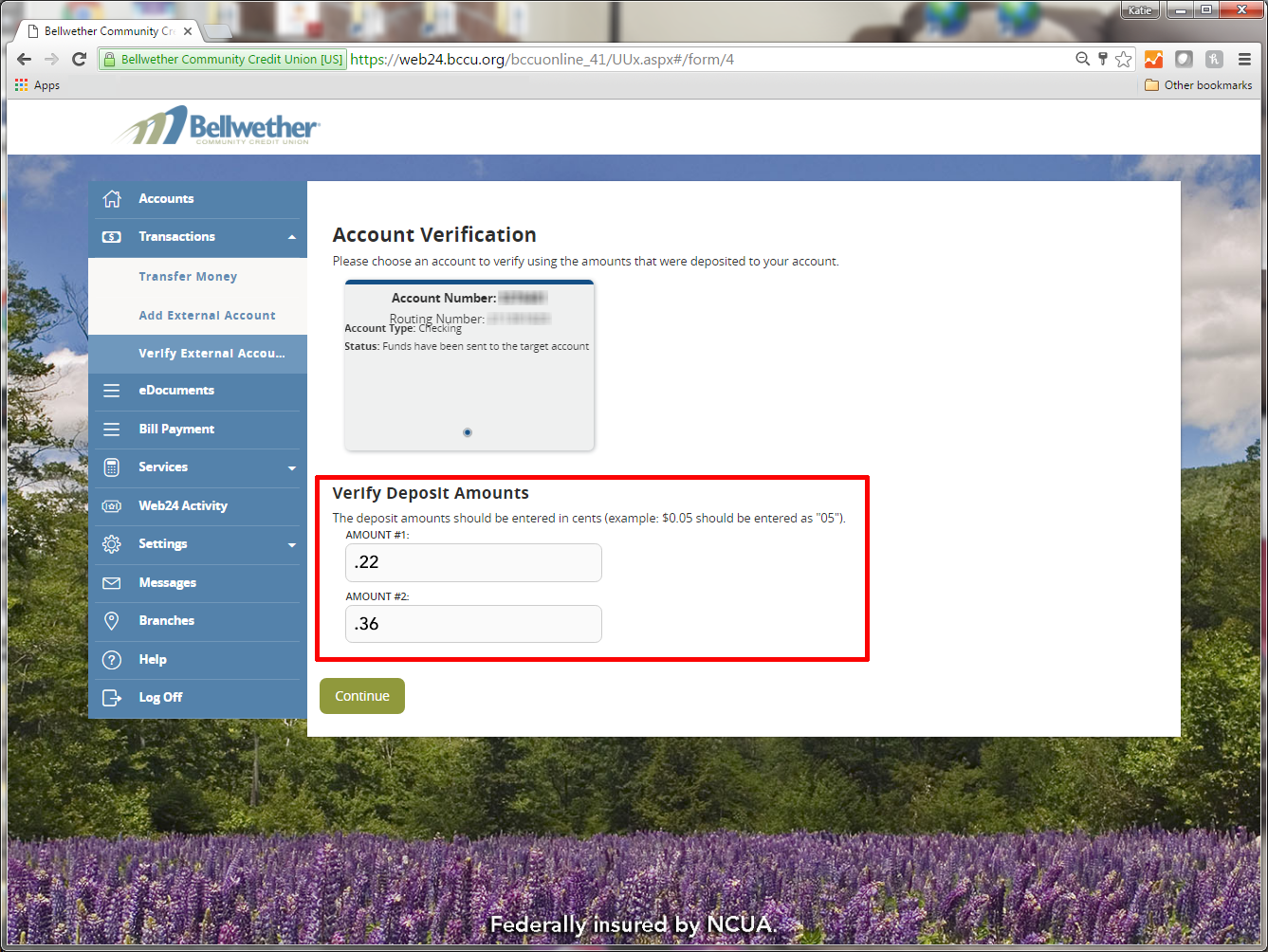 screenshot showing account confirmation form